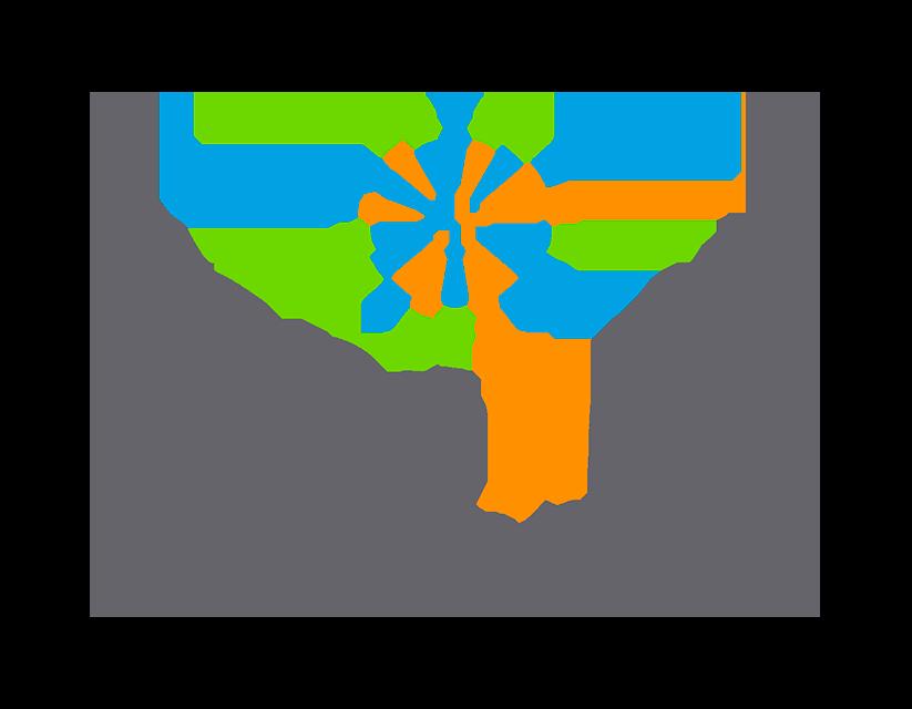 CONAPDIS Logo